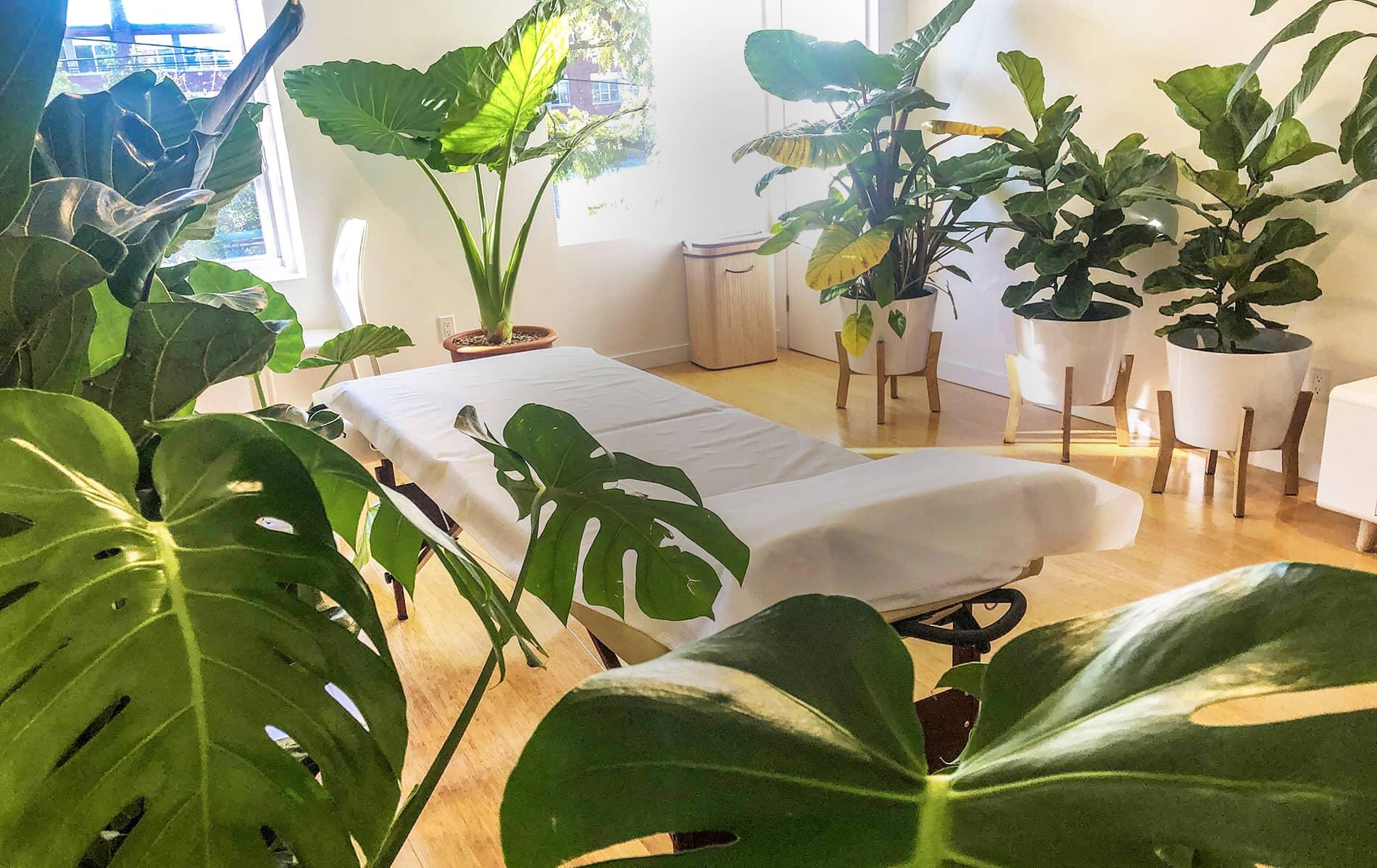 Biofield Medical | Green Room